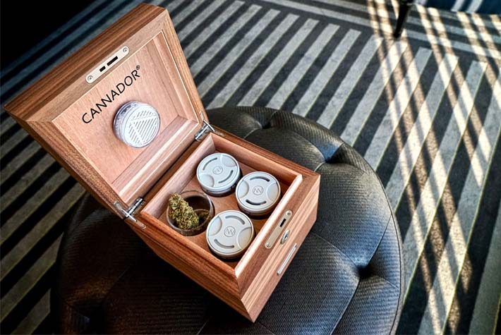 Buying your first Cannabis Humidor