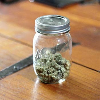 Photo of Weed in Mason Jar